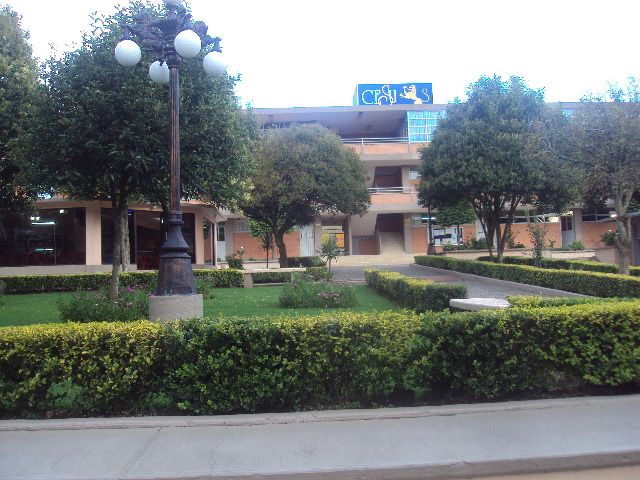 CESU Universidad